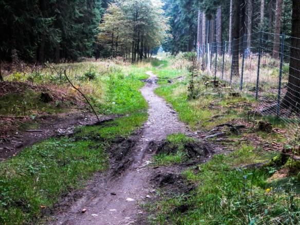 Trailpassage im Geyerischen Wald