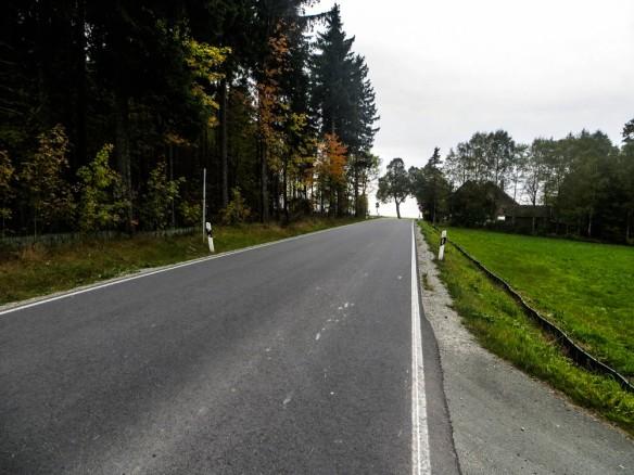 kurze Straßenpassage bevor es wieder am Waldrand weitergeht....