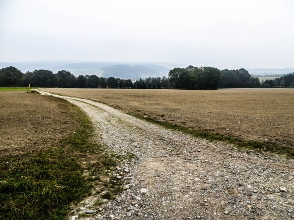 abwärts nach Burkhardtsdorf